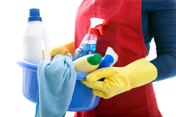 woman carrying a bucket of cleaning supplies, homeowner survival skills