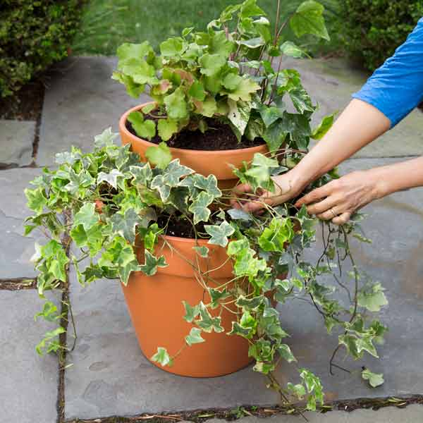 using bricks in container planter for tiered plants, 10 uses for bricks