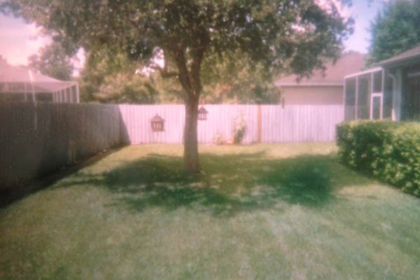 reader remodel contest yard before and after jane p.