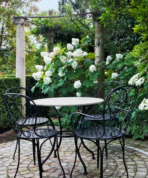avoid invasive plants garden patio with dining set and Oakleaf Hydrangea