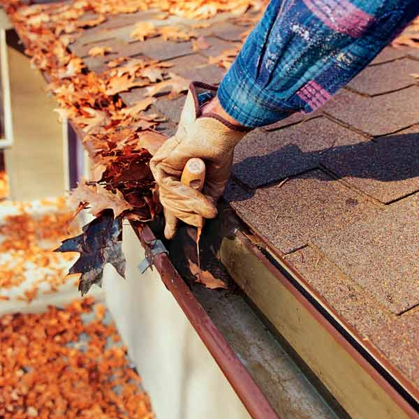 cleaning leaves out of gutters, march fast fix upgrades