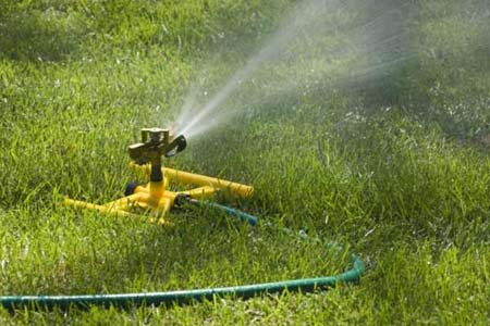 water sprinkler in yard
