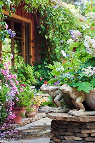 Plants For The Porch