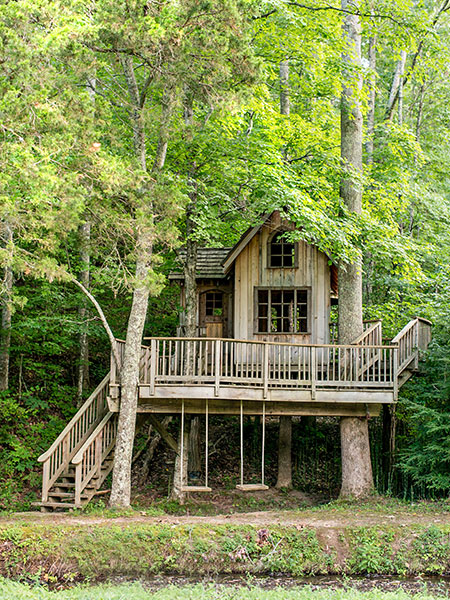 com treehouse www animal planet html with 0  20960068 30402283 00 on Its Treehouse Its Brewery Its Treehouse together with Super Treehouse further Take Look Pete Nelsons First Ever International Treehouse Norway in addition Round Tree House likewise Pete Nelson.