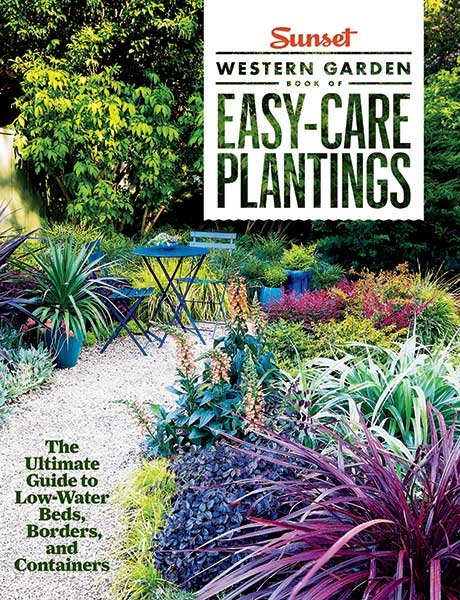 Get the book easy care low water container gardens for Easy care garden shrubs