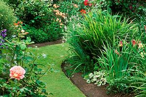 weedless garden bed