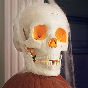 a skull light