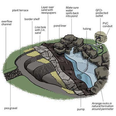 Overview how to create a backyard pond this old house for Garden pond design and construction