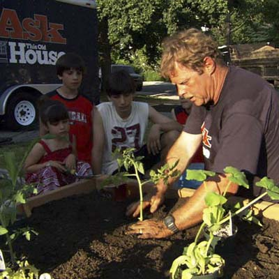 Roger Cook planting seedlings in a raised garden bed