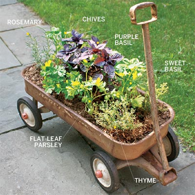 example of an herb garden planted in a wagon