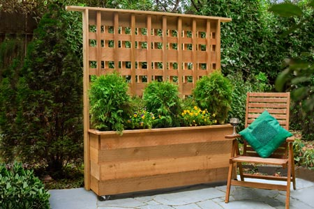 privacy planter boxes