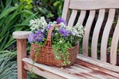 sunbleached wood outdoor bench with a basket of flowers