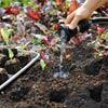 getting ready to plant the seedlings, step by step for how to start seeds