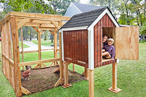a finished chicken coop
