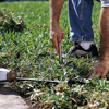 Preparing holes for landscape lighting