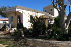 new trees and shrubs in front of the New Orleans house project