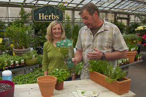 Roger Cook gets a lesson from horticulturist Carrie Kelly on growing herbs