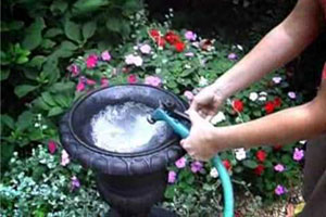 hose filling the vintage urn turned garden fountain