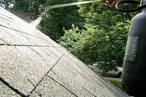 removing moss from a roof