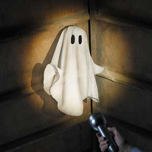 ghost with flashlight shining on it