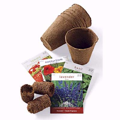 start your plant growing indoors with nest or peat pots